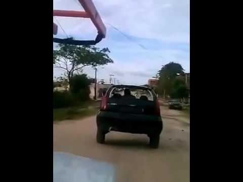 Cavalo Puxando Metade De Um Carro