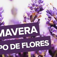 Estação Das Flores
